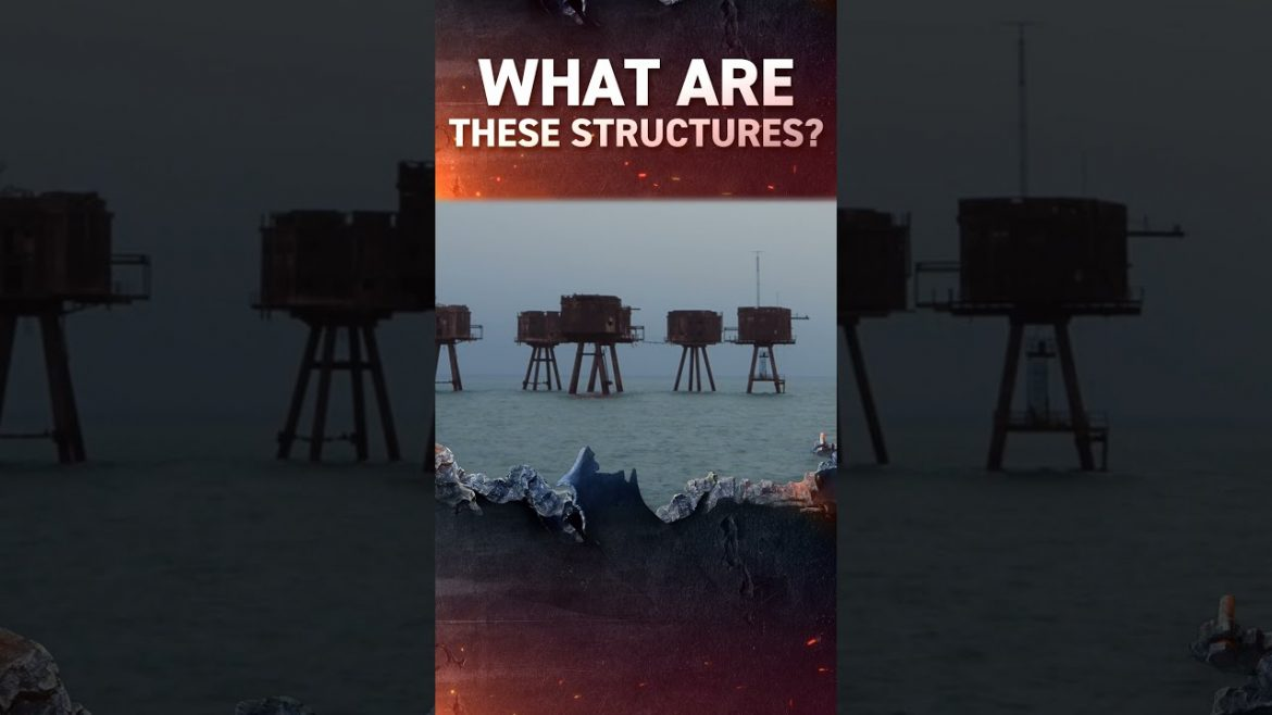 What are these structures? #shorts
